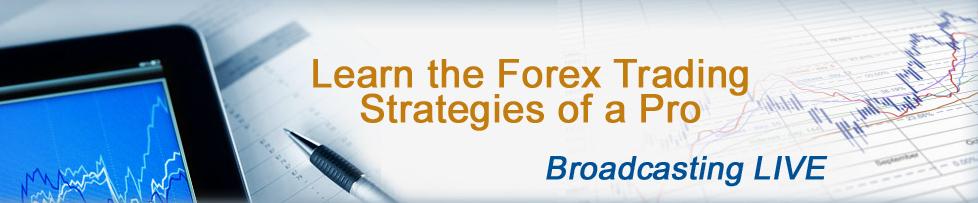 Forex Mentoring Program