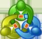 meta-icon
